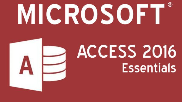 Office Productivity - Learn the fundamentals of MS Access Database applications